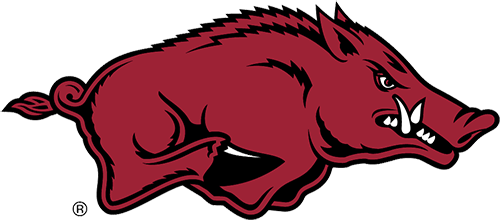 We are excited for Fall and Football Season!  Go Hogs!  Woo Pig Sooie!